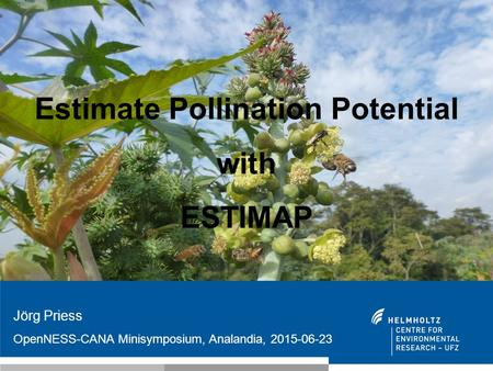 Estimate Pollination Potential with ESTIMAP Jörg Priess OpenNESS-CANA Minisymposium, Analandia, 2015-06-23.
