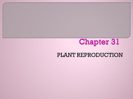 PLANT REPRODUCTION. The following is the question for this chapter. See the Polls and ArtJoinIn for this chapter if your campus uses a Personal Response.