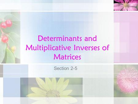 Determinants and Multiplicative Inverses of Matrices