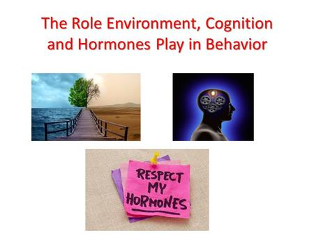 how the environment plays a role Your next lesson will play in 10 seconds  the role of individuals in protecting the environment 6:06  the role of individuals in protecting the environment related study materials related.