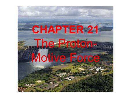 The Proton-Motive Force
