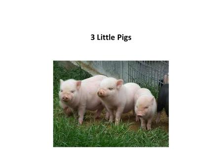 3 Little Pigs. The 3 little pigs were happy. The big bad wolf made them sad.