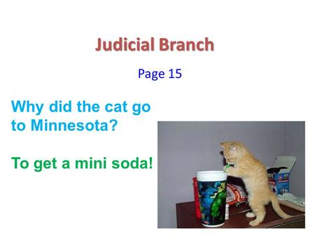 Judicial Branch Page 15 Why did the cat go to Minnesota? To get a mini soda!