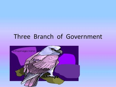 Three Branch of Government By Macee Executive Branch The Executive Branch is run by the President and Vice President. The Executive Branch is housed.