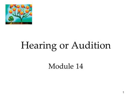 1 Hearing or Audition Module 14. Hearing Our auditory sense.