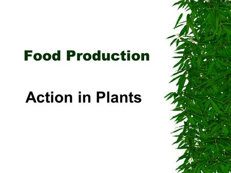 Food Production Action in Plants Plant cells  Plant cells contain a jelly-like cytoplasm  They all have a nucleus  They usually have a sap-filled.