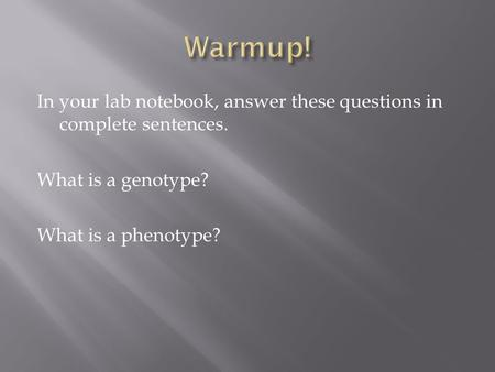 In your lab notebook, answer these questions in complete sentences. What is a genotype? What is a phenotype?