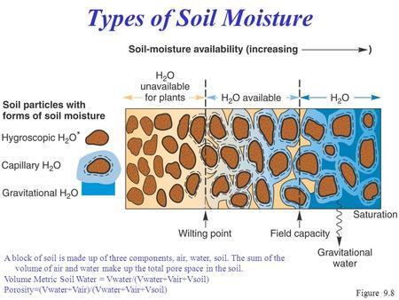 Lecture 11 evapotranspiration 4 ppt video online download for Four main components of soil