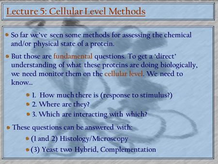 Lecture 5: Cellular Level Methods So far we've seen some methods for assessing the chemical and/or physical state of a protein. But those are fundamental.