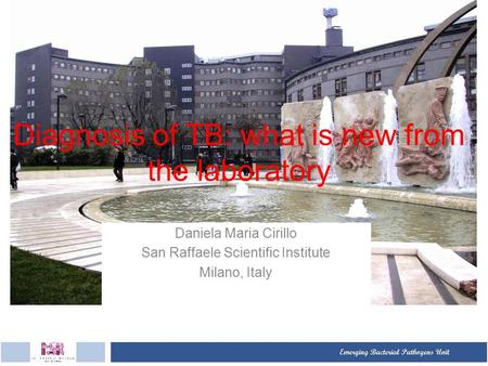 Diagnosis of TB: what is new from the laboratory Daniela Maria Cirillo San Raffaele Scientific Institute Milano, Italy.