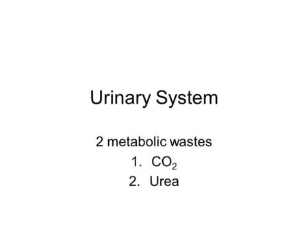 Urinary System 2 metabolic wastes 1.CO 2 2.Urea. Urea Contains Nitrogen (N) wastes given off by cells. Nitrogen wastes are toxic Liver collects these.
