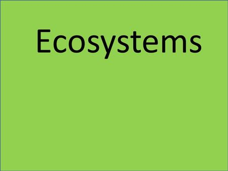 Ecosystems. What makes areas of the world different from each other?
