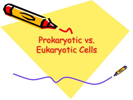 Prokaryotic vs. Eukaryotic Cells. All cells fall into one of the two major classifications of prokaryotes and eukaryotes. Prokaryotes were here first.