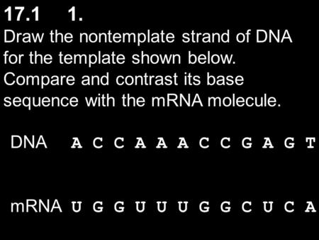 Draw the nontemplate strand of DNA for the template shown below