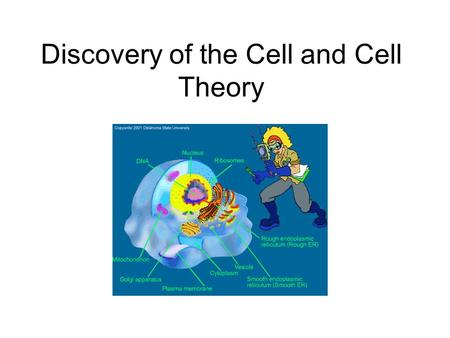 "Discovery of the Cell and Cell Theory. Observations of Dead Cells Robert Hooke (1635- 1703) –First to view cells (dead cork cells) –Thought that the ""little."