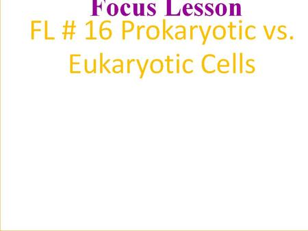 Two Major Divisions of Cells Prokaryotic Cells: bacteria Eukaryotic Cells: plant, animals, fungi, protistsbacteria.