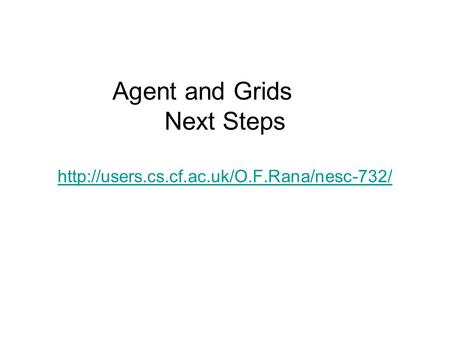Agent and Grids Next Steps