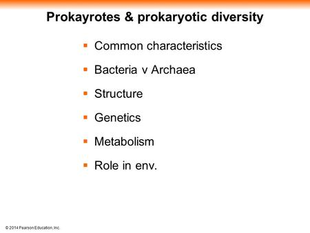 essay on prokaryotes in ecology Gene regulation teacher packet  prokaryotes: operon an operon is a set of genes grouped together, transcribed together with one promoter for one function.