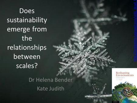 Does sustainability emerge from the relationships between scales? Dr Helena Bender.