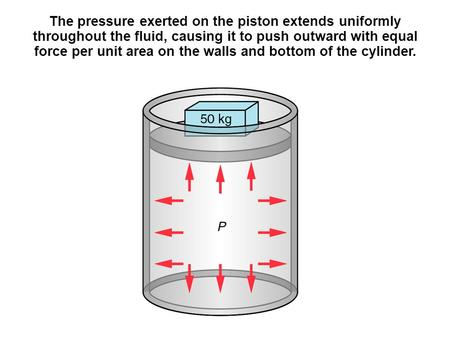 The pressure exerted on the piston extends uniformly throughout the fluid, causing it to push outward with equal force per unit area on the walls and bottom.