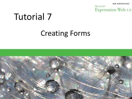 Tutorial 7 Creating Forms. Objectives Session 7.1 – Create an HTML form – Insert fields for text – Add labels for form elements – Create radio buttons.