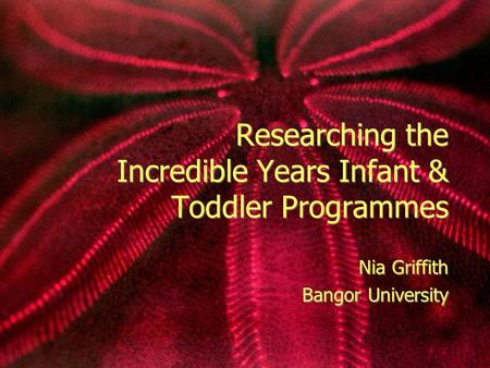 Researching the Incredible Years Infant & Toddler Programmes Nia Griffith Bangor University Nia Griffith Bangor University.