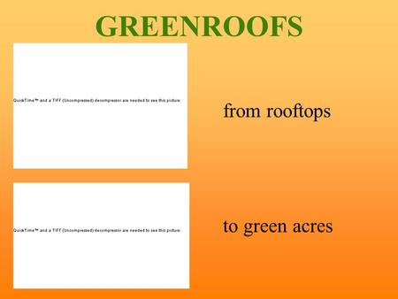 GREENROOFS from rooftops to green acres. traditional roof garden, planting is done in freestanding containers and planters, located on accessible roof.