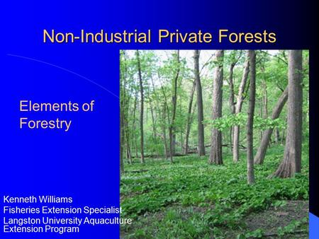 Non-Industrial Private Forests Kenneth Williams Fisheries Extension Specialist Langston University Aquaculture Extension Program Elements of Forestry.