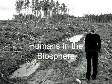 Humans in the Biosphere. A Changing Landscape * Human activities change the flow of energy in an ecosystem and can reduce the ability of ecosystems to.