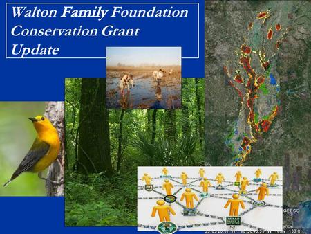 NAWCA WFF Cons Grant NAWCA Walton Family Foundation Conservation Grant Update Brief History & Context Early 2009 > Initial discussions with WFF through.