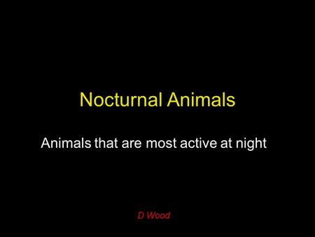 Nocturnal Animals Animals that are most active at night D Wood.