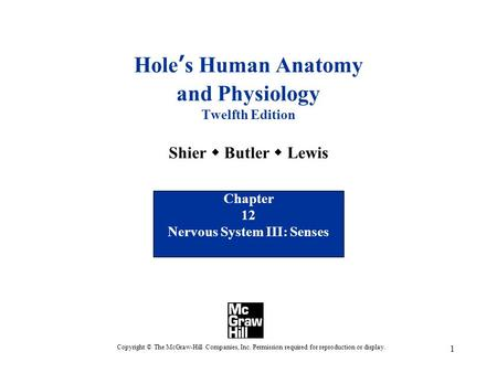 1 Hole's Human Anatomy and Physiology Twelfth Edition Shier  Butler  Lewis Chapter 12 Nervous System III: Senses Copyright © The McGraw-Hill Companies,