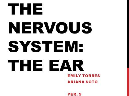 The nervous system: the ear