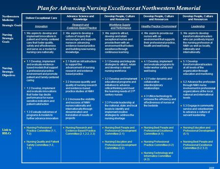 Northwestern Medicine Strategic Goals Nursing Strategic Objectives Deliver Exceptional Care Advance Science and Knowledge Develop People, Culture and Resources.
