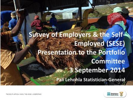 STATS SA THE SOUTH AFRICA I KNOW, THE HOME I UNDERSTAND Survey of Employers & the Self- Employed (SESE) Presentation to the Portfolio Committee 3 September.