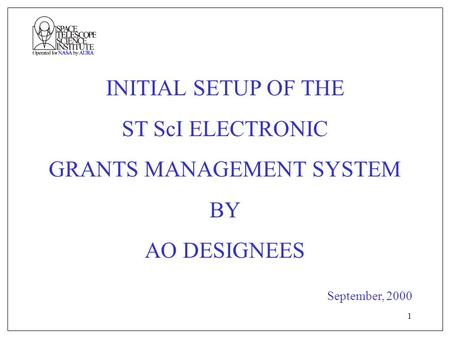 1 INITIAL SETUP OF THE ST ScI ELECTRONIC GRANTS MANAGEMENT SYSTEM BY AO DESIGNEES September, 2000.