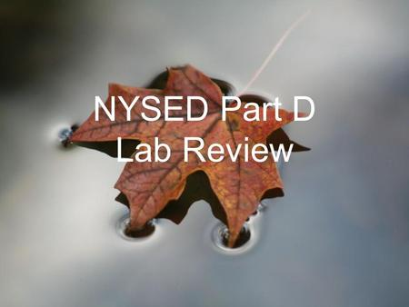 NYSED Part D Lab Review. Diffusion and Osmosis Designed to help you understand the concepts of Diffusion and Osmosis and how these cell processes effect.