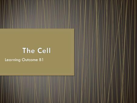 Learning Outcome B1. Analyze the functional inter-relationship of cell structures.