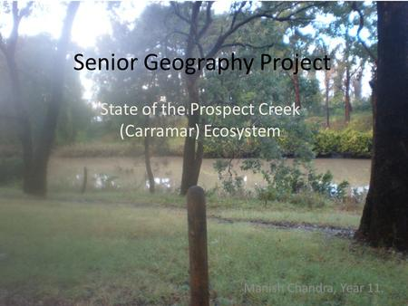 Senior Geography Project State of the Prospect Creek (Carramar) Ecosystem Manish Chandra, Year 11.