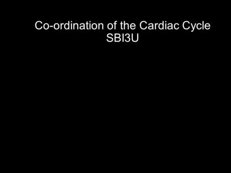 Co-ordination of the Cardiac Cycle SBI3U. The heart is made of cardiac muscle. When the cells receive an electrical impulse they contract - causing a.
