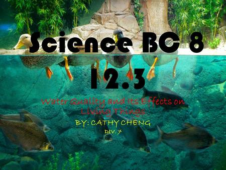 Science BC 8 12.3 Water Quality and Its Effects on Living Things BY: CATHY CHENG DIV. 7.