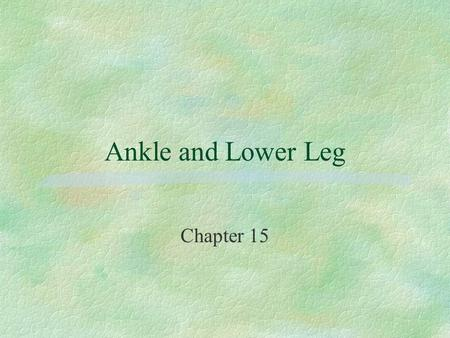 Ankle and Lower Leg Chapter 15. BONES OF THE ANKLE AND LOWER LEG §TIBIA l MEDIAL MALLEOLUS §FIBULA l LATERAL MALLEOLUS §TALUS §CALCANEUS.