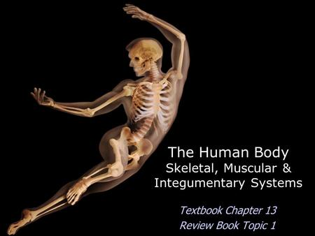 The Human Body Skeletal, Muscular & Integumentary Systems Textbook Chapter 13 Review Book Topic 1.