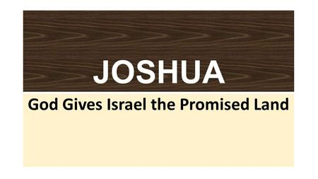 JOSHUA God Gives Israel the Promised Land. JOSHUA: Plot Joshua leads Israel in the Conquest of Canaan (chaps. 1-12) The 12 Tribes divide the land (chaps.