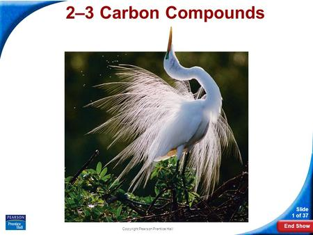 End Show Slide 1 of 37 Copyright Pearson Prentice Hall 2–3 Carbon Compounds.