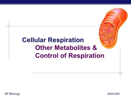 AP Biology 2006-2007 Cellular Respiration Other Metabolites & Control of Respiration.