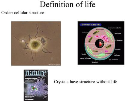 Definition of life Order: cellular structure Crystals have structure without life.