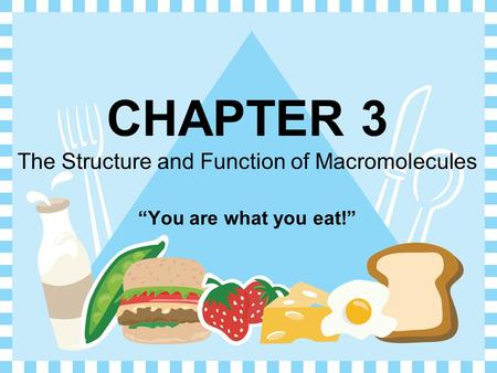 "CHAPTER 3 The Structure and Function of Macromolecules ""You are what you eat!"""