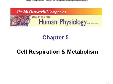Copyright © The McGraw-Hill Companies, Inc. Permission required for reproduction or display. Chapter 5 Cell Respiration & Metabolism 5-1.