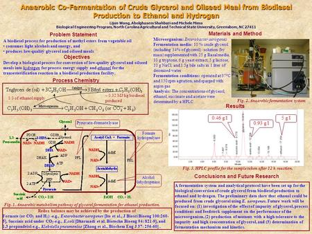 Anaerobic Co-Fermentation of Crude Glycerol and Oilseed Meal from Biodiesel Production to Ethanol and Hydrogen Lijun Wang, Abolghasem Shahbazi and Michele.